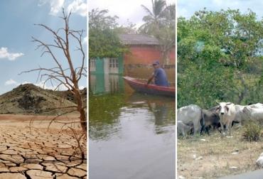 Balance Bolívar ganadería 2016, ganaderos Bolívar 2016, ganadería Bolívar 2016, afectaciones Bolívar fenómeno de El Niño, afectaciones ganadería Bolívar fenómeno de El Niño 2016, CONtexto ganadero, ganaderos Colombia
