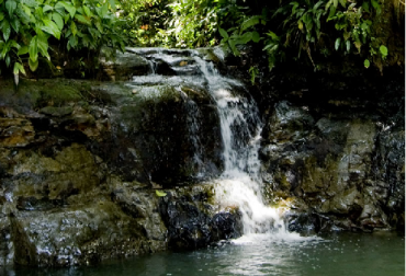 Colombia, Parque Nacional Natural de Uramba Bahía Málaga, ministro de Ambiente Luis Gilberto Murillo, Agenda 2030,  Objetivo de Desarrollo Sostenible 14, CONtexto ganadero, ganadería Colombia