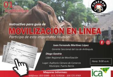 guías, guías por internet, movilización animal, movilización de bovinos, guías de movilización, ica, ica colombia, ganaderos de puerto berrío, coregán, contexto ganadero, ganadería colombia