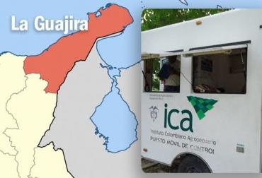 aftosa, Fiebre aftosa, aftosa colombia, brote de fiebre aftosa en colombia, ganadería La Guajira, ganaderos la guajira, CONtexto ganadero, ganadería colombia