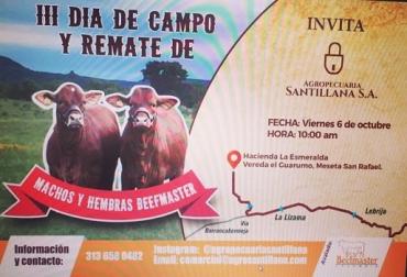 día de campo, beefmaster puro, conferencias, mercado beefmaster, cruce con cebú, carne, hato puro, CONtexto Ganadero