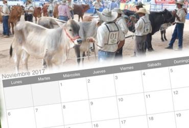 Ferias ganaderas Colombia noviembre 2017, ferias ganaderas Colombia 2017, ferias ganaderas noviembre 2017, ferias, Ferias Ganaderas, ferias Colombia, Eventos ganaderos, eventos ganaderos colombia, CONtexto ganadero, ganadería colombia, noticias ganaderas Colombia