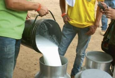 Disminuye producción de leche, reducción atribuida al verano, bajonazo se debe también a precios bajos, CONtexto Ganadero, noticias de ganadería colombiana.