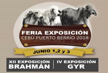 Expocebú, ganado Brahman, ganado Gyr, alta genética, juzgamiento, concurso lechero, remate de estrellas, Sugaberrio, Coregan, CONtexto Ganadero, noticias de ganadería colombiana.