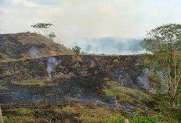 Quemas destruyen carbono del suelo, muestras en Orinoquia, Reserva Serranías de Casablanca (Vichada), reducción de carbono, nutrientes del suelo, CONtexto Ganadero, noticias de ganadería colombiana