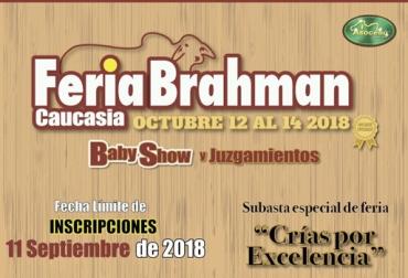 Feria Brahman Caucasia 2018, 3ra Feria Brahman Caucasia, Ganadería Caucasia, Gyr, brahman, simbrah, competencias de ganado Colombia, Fundación Fomento Ganadero, Eventos ganaderos, eventos ganaderos colombia, CONtexto ganadero, ganaderos colombia, noticias ganaderas colombia