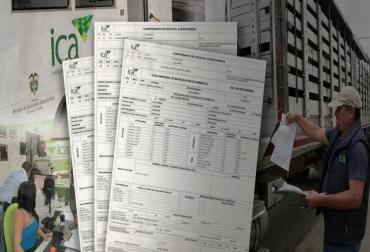 Expedición de Guías de movilización de ganado, sede central ICA, centralizar, ganaderos no comprenden la medida, iniciaría con las fronteras, esquema de información vulnerable, ganaderos solicitan rapidez, CONtexto Ganadero, noticias de ganadería colombiana.