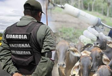 Retienen vacunadores, Guardia de Venezuela, campaña contra la fiebre aftosa, retención en contra de su voluntad, decomiso de neveras y biológicos, vacunadores maltratados y amenazados, denuncias, CONtexto ganadero, noticias de ganadería colombiana.