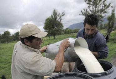 Globalización, diseñar una política agropecuaria articulada y de Estado, consensos, unión, retos de la globalización, políticas de Estado, políticas articuladas, cesar el enredo, una entidad le pisa terrenos a otra, desarticulación estatal, CONtexto ganadero, noticias de ganadería colombiana.