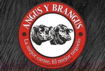 Asociación Angus Brangus 2019, Asociación Angus & Brangus de Colombia, Mauricio León Gómez, Actividades Angus Brangus 2019, eventos Asociación Angus Brangus 2019, Día de Campus Asociación Angus & Brangus, día de campo Aso Angus Brangus, Comprar Brangus en Colombia, día de campo Angus, día de campo brangus, noticias Angus Colombia, noticias Brangus Colombia, información Brangus Colombia, Asociación Angus & Brangus, CONtexto ganadero, ganaderos colombia, noticias ganaderas colombia