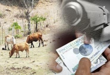 Mojana y San Jorge inseguridad, desanimo en inversión, Guerrilla en La Mojana y San Jorge, guerrilla subsiste por cultivos ilícitos y minería ilegal, guerrilla subsiste por la extorsión, seguridad invisible, extorsión a los ganaderos, nadie denuncia, CONtexto ganadero, noticias de ganadería colombiana.