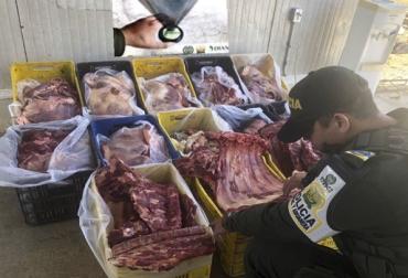 Ganadería, ganadería colombia, noticias ganaderas, noticias ganaderas colombia, CONtexto ganadero, ciip, Arauca, Contrabando, Contrabando de ganado, Carne de contrabando, contrabando arauca, ICA, Polfa, Invima