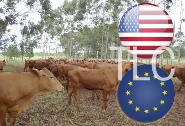 Por TLC con EE.UU. y UE desaparecería 53 % de la ganadería, saldrán los dedicados a doble propósito, productores no competitivos,  disminuir producción, dar paso a importaciones, ordenamiento sector lácteo, industria pulverice, CONtexto ganadero, noticias de ganadería colombiana.