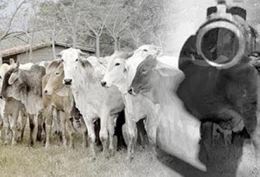 inseguridad en Arauca, secuestro en Arauca, extorsión en Arauca, inseguridad en el sector ganadero de Arauca