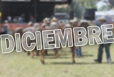 ferias ganaderas diciembre 2019, eventos ganaderos diciembre 2019, encuentros ganaderos diciembre 2019, feria ganadera de yopal, expo lácteos, expo sabana 2019