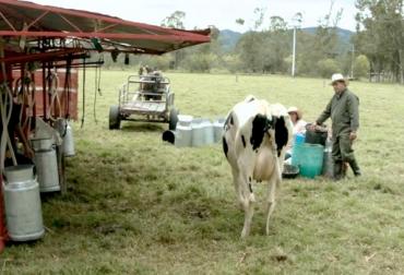 Ganadería, ganadería colombia, noticias ganaderas, noticias ganaderas colombia, CONtexto ganadero, Boyacá, leche boyacá, precio de la leche en boyacá, ganadería boyacá, fabegan boyacá, Gobernación de Boyacá