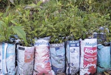 bolsas de leche, reciclaje, Corpoboyacá, materia prima, estrategia verde, disposición responsable, Producción, material vegetal, Ganadería, ganadería colombia, noticias ganaderas colombia, CONtexto ganadero