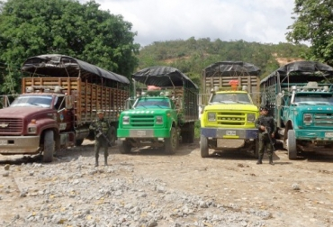 Contrabando ganadero desde Venezuela