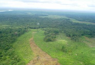 Deforestación en Guaviare