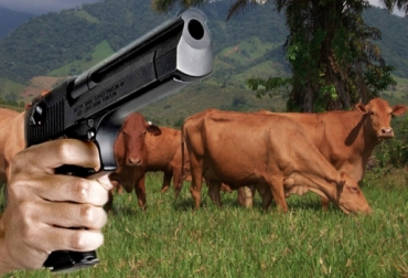 Robo de ganado