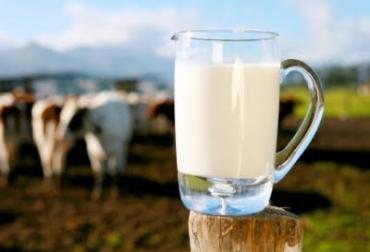 sector lácteo Risaralda