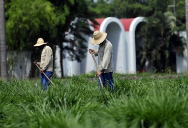 Gracias a este evento, los ganaderos tendrán un mejor manejo de sus fincas. Foto: Archivo.