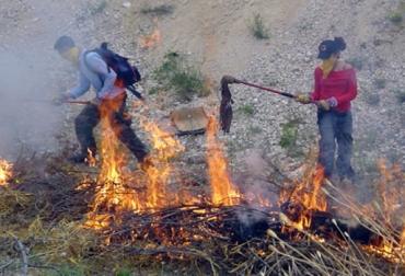 Incendio forestal en Colombia.