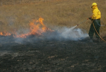 Incendios forestales Meta