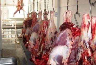 Beneficio de ganado