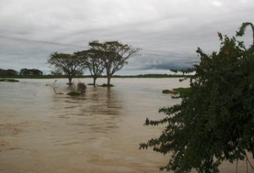 Ya son dos años de la tragedia del Canal del Dique y las secuelas aún se sienten en los ganaderos. Foto: Archivo.
