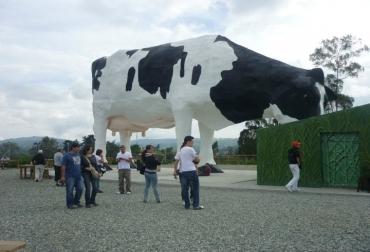 Manuela, la vaca más grande del mundo
