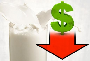 ganaderos de leche en crisis