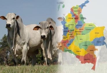inventario bovino Colombia