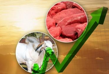 Aumento precio carne y ganado