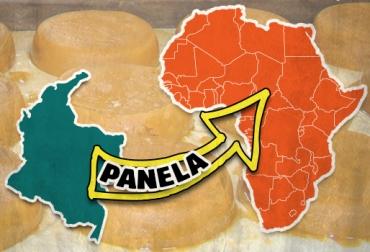 exportación panela colombiana