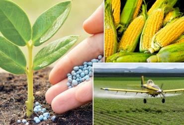 Insumos sector agropecuario