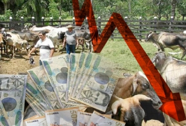 Créditos ganadería 2015 Finagro