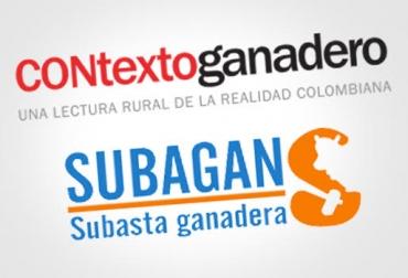 precio del ganado, precio del ganado en córdoba, precio del ganado en colombia, ganadería colombia, contexto ganadero