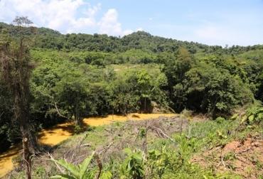 Colombia, Medio Ambiente, El Bagre, Usaid, CONtexto ganadero, ganadería colombia