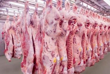 exportación carne, pérdidas ganadería Colombiana, efectos del brote de aftosa, brote de aftosa, brote de aftosa exportaciones, CONtexto ganadero, ganaderos colombia, noticias ganaderas colombia