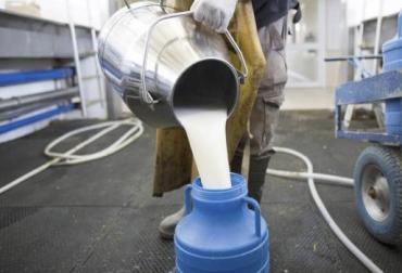 Acopio formal leche Colombia junio 2018, Acopio formal leche Colombia primer semestre 2018, producción leche Colombia junio 2018, producción leche Colombia 2018, acopio formal leche 2018, importaciones de leche en polvo colombia, precio pagado al productor 2018, importaciones de leche en polvo tlc, CONtexto ganadero, ganaderos colombia, noticias ganaderas colombia