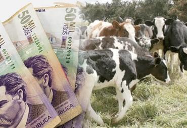 Banco Agrario, formación bruta de capital, mejoramiento productivo, inversión en productividad,  problema de productividad, penetración del crédito agropecuario, tecnología, fuerza comercial del Banco Agrario, CONtexto ganadero, noticias de ganadería colombiana.