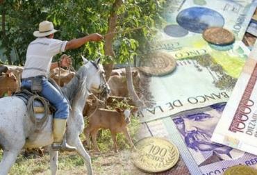 Flujo de caja, herramienta de organización, buenas prácticas, información del negocio, proyección sistemática, lechería especializada, ceba, silvopastoriles, CONtexto ganadero, noticias de ganadería colombiana.