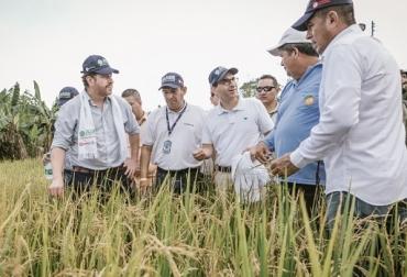 Colombia, Ministerio de Agricultura y Desarrollo Rural, Seguros agropecuarios, estrategia 360 Grados, gobierno incentivará la cultura del aseguramiento y la protección frente eventos de variabilidad climática, Contexto ganadero, noticias ganaderas, vacas, agricultura,
