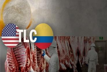 TLC Colombia Estados Unidos 7 años ganadería leche carne, TLC Colombia Estados Unidos 7 años, TLC Colombia Estados Unidos sector ganadero, TLC Colombia Estados Unidos 2012-2019, Avances TLC Colombia Estados Unidos, Tratado Libre Comercio Colombia Estados Unidos Sector Ganadero, sector ganadero TLC 7 años, CONtexto ganadero, ganaderos colombia, noticias ganaderas colombia