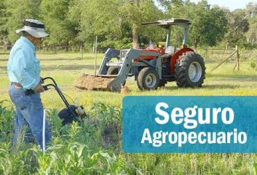 seguro agropecuario, póliza, subsidio, Heladas, finagro, Ganadería, bovinos, ganadería colombia, noticias ganaderas colombia, CONtexto ganadero
