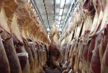 Sacrificio de ganado 2020, sacrificio bovino 2020, sacrificio marzo 2020, cifras sacrificio, sacrificio legal de bovinos, sacrificio formal, sacrificio colombia, sacrificio bovino Colombia, encuesta sacrificio ganado 2020, Cifras sacrificio bovino Colombia 2020, sacrificio bovino Colombia 2020, sacrificio bovino Colombia fedegán, coronavirus, COVID-19, cuarentena, Ganadería, ganadería colombia, noticias ganaderas, noticias ganaderas colombia, CONtexto ganadero