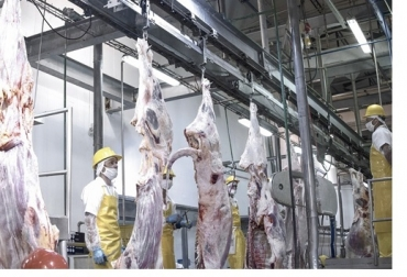 Athena Foods de Minerva, acuerda compra de Vijagual, frigorífico de Bucaramanga, nordeste de Colombia, líder de la industria, casa matriz en Brasil, modernización, amplia capacidad productiva, amplia comercio exterior, adquisición de activos, norma HACCP, norma ISO 9001, noticias de ganadería colombiana, CONtexto ganadero.