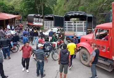 Bloqueos de vía, ganadería, pérdidas en la ganadería, pérdidas en ganadería de leche, pérdidas en ganadería de carne, vacas, vacas Colombia, lechería, bovinos, ganadería bovina, ganadería bovina Colombia, noticias ganaderas, noticias ganaderas Colombia, contextoganadero