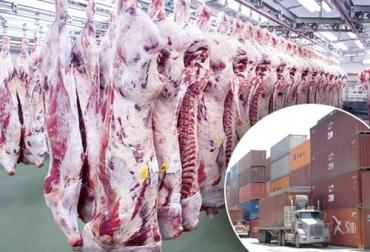 Importaciones carne 2021, Importaciones carne abril 2021, importaciones carne primer cuatrimestre 2021, importaciones carne colombia 2021, importaciones de carne bovina en Colombia, importaciones, carne de res, carne, ganado bovino, ganadería bovina, ganaderos, ganaderos colombia, ganado, vacas, vacas Colombia, bovinos, Ganadería, ganadería colombia, noticias ganaderas, noticias ganaderas colombia, CONtexto ganadero, contextoganadero